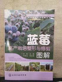 蓝莓高产栽培整形与修剪图解(2018.10重印)