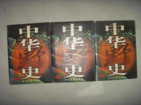 中华野史镜鉴(全三卷)