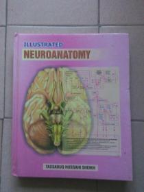 ILLUSTRATED NEUROANATOMY