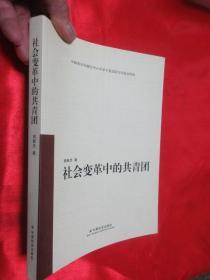 社会变革中的共青团     【小16开】