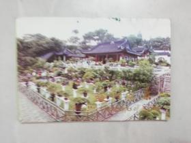 苏州盆景明信片 (10张全)