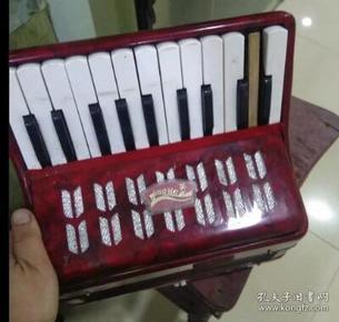 现代,英杰小手风琴
