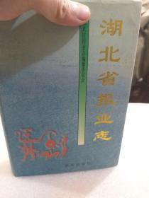 硬精装本《湖北省报业志》(缺第一页和最后一页)一册