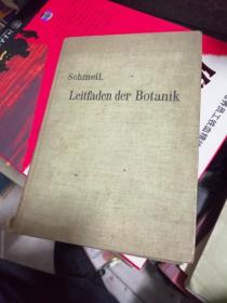 Leitfaden der Botanik(德语原版 铜板纸精装本)植物学指南1905年版多彩图馆藏