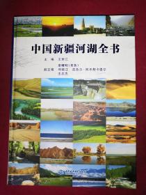 中国新疆河湖全书(大16开精装)