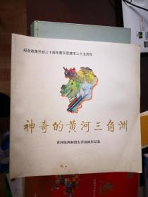 神奇的黄河三角洲--黄河绿洲和谐东营油画作品集【南车库】106