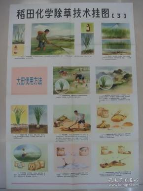 稻田化学除草技术挂图(3)(彩色挂图,1975年4月农业出版社)