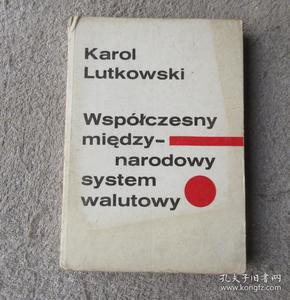 Współczesny międzynarodowy system walutowy 当代国际货币体系(波兰语原版)