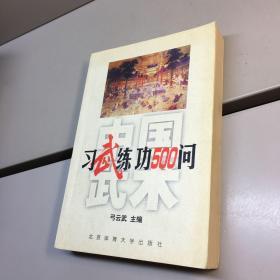中国武术:习武练功500问 【一版一印 正版现货   实图拍摄 看图下单】