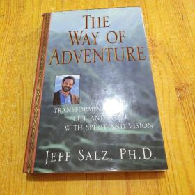 The Way of Adventure: Transforming Your Life and Work with Spirit and Vision (英语) 精装