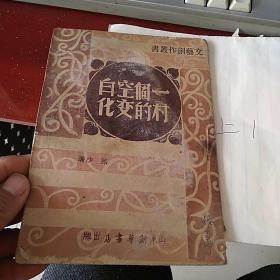 文艺创作丛书(一个空白村的变化)