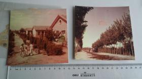 1958皖北 黄河故道 反转底片两种,安徽画报社彩页原作