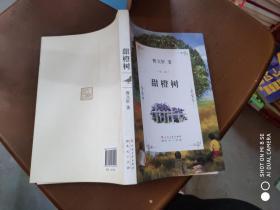 曹文轩文集:甜橙树