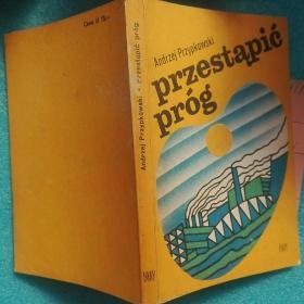 preyest?pi? próg 预先测试门槛(外文原版 波兰语)