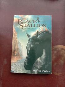 The Black Stallion【黑神驹,沃尔特法利,英文原版】