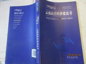 云南蓝皮书:2013~2014云南民营经济蓝皮书