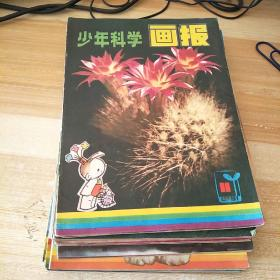 少年科学画报1982年1-12少8.9.10.1983年1.2.1981年1-12少1    22本合售