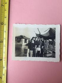照片,1961年,上海南翔古猗园,送一张
