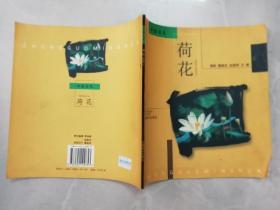 中国名花 ——荷花(摄影作品)