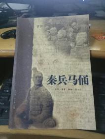 中国重大考古发掘记:秦兵马俑