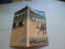 沿着青藏铁路