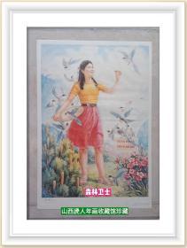 中国经典年画宣传画电影海报大展示---80年代---《森林卫士》-----对开-----虒人荣誉珍藏