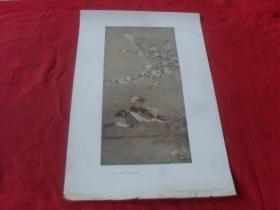 55年老画片---《南宋桃花鸂鶒图》8开  1955年一版一印