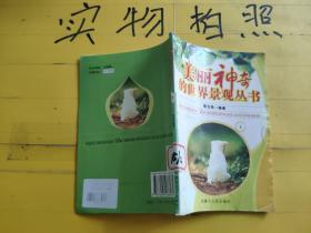 美丽神奇的世界景观丛书   1