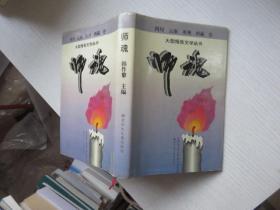 大型报告文学丛书:师魂(四川、云南、贵州、西藏卷)