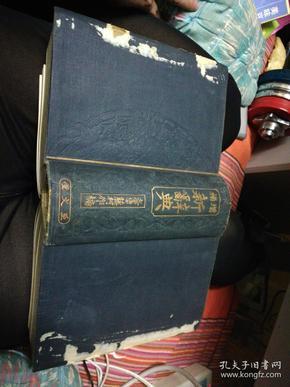 增补新辞典