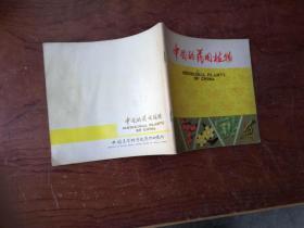 【24开本全彩页 中国的药用植物