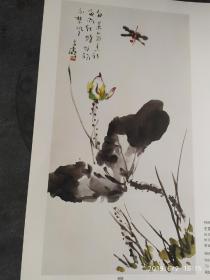 画页:秋实蔬果、荷花蜻蜓--王雪涛109