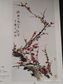 画页:梅花、月季蜘蛛--王雪涛109