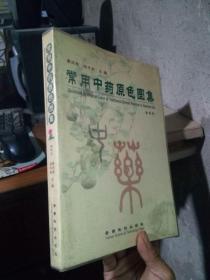 常用中药原色图集:植物药 2003年一版一印4000册  私藏品好干净