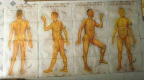 人体十四经穴图像(四张全)