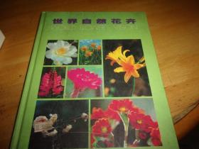 世界自然花卉