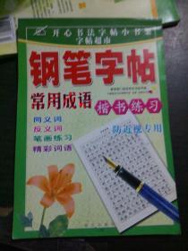 钢笔字帖 常用成语 楷书练习