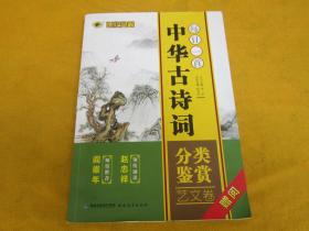 每日一首 中华古诗词 分类鉴赏 文艺卷——有印章侧面墨迹内页干净