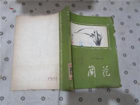 花卉栽培丛书·兰花