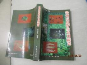 贵州高原野生食用蔬菜   实物图  品自定  28-4