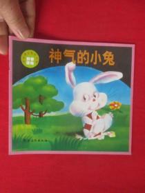 神气的小兔(外国著名寓言故事 拼音读物)  24开本