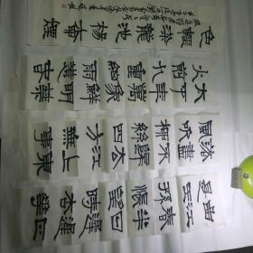 当代著名书法家赵熊书法作品