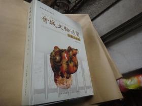 晋城文物通览馆藏文物卷   大16开精装