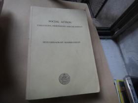 social action variations dimensions and dilemmas  社会行动差异的维度与困境