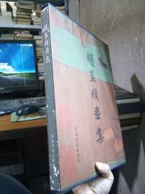 赵孟頫画集 1995年一版一印2500册 精装 品好干净