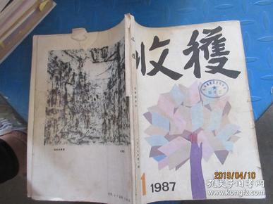 收获1987  1