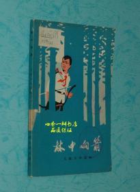 文革期间儿童文学:林中响箭