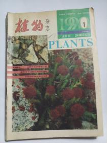 植物杂志1990年(第1-5期)