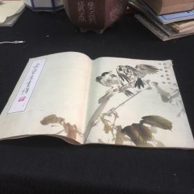 荣宝斋画谱(二五)--花鸟草虫部分