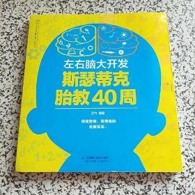 左右脑大开发 斯瑟蒂克胎教40周(汉竹)